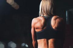 Crosstrainer Muskelgruppen